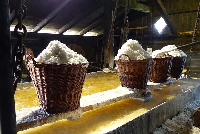 těžba soli