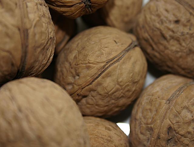 vlašské ořechy ve skořápce